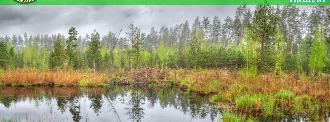 <b>З Днем водно-болотних угідь!</b>