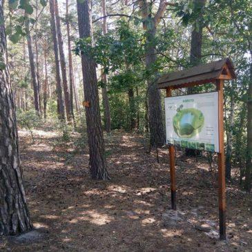 Фахове обстеження екологічних стежок та прилеглих територій