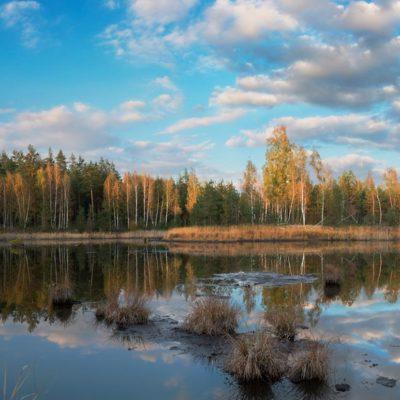Фото: Сергій Сосницький