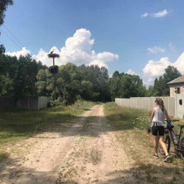 Обліки лелек в Краснокутському районі