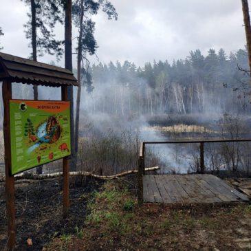 Екологічна стежка після пожежі