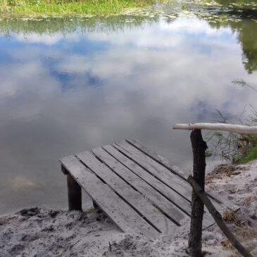 Місця відпочинку біля водойм ціняться в літню спеку.